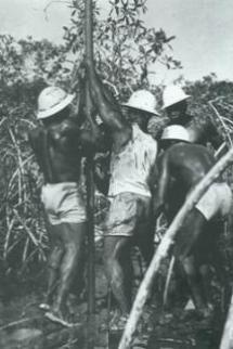 Campagne sismique dans la région de l'île de Mandji en 1953